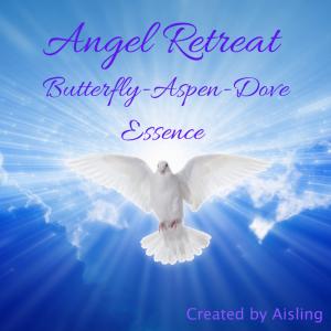 Angel Retreat Essence